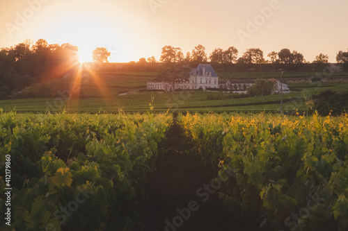 Canvas Print Countryside rural vineyards in Bordeaux wine country at Saint-Emilion in France