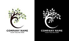 Circle Tree Logo Letter C Vector Illustration Design
