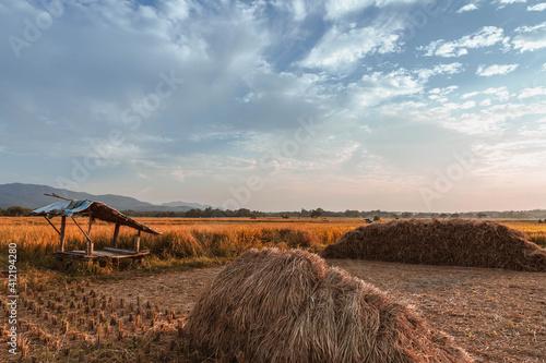Fotografie, Obraz The haystacks  and the beautiful sky.