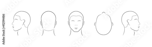Set of human head icons. Lined male head in different angles isolated on white background. Vector illustration - fototapety na wymiar