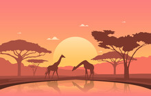 Giraffe Sunset Oasis Animal Savanna Landscape Africa Wildlife Illustration