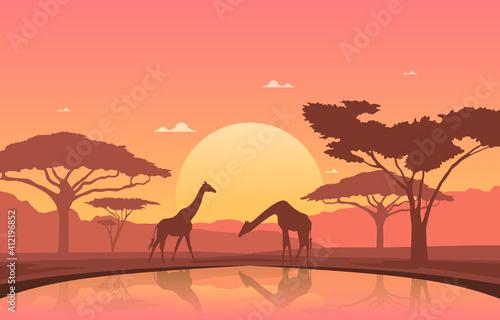 Photo Giraffe Sunset Oasis Animal Savanna Landscape Africa Wildlife Illustration