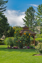 Recreation Area In A Park With Benches And Wooden Gazebo Under Sunflowers