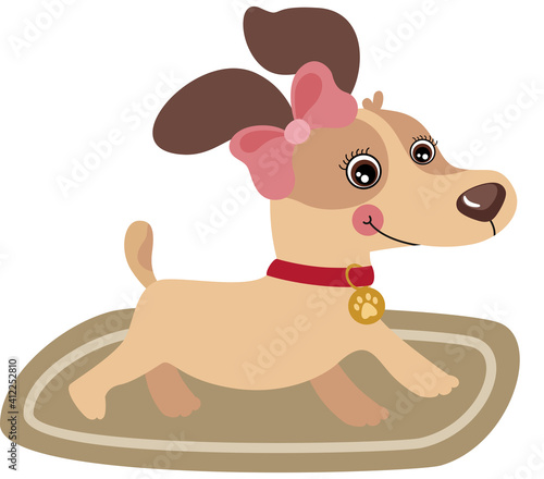 Sweet Female Puppy Dog On Carpet #412252810