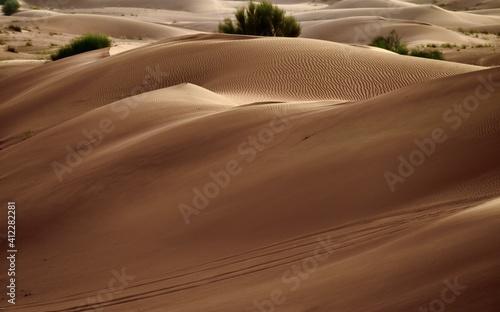 Obraz na plátně Sand Dunes In A Desert