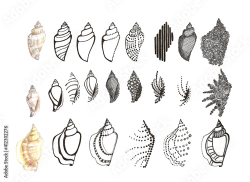 Canvas Print Black and white stylization of seashells