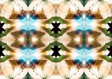Floral Pattern Sight Inside Ancient Kaleidoscope
