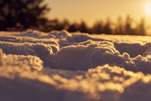 Snow In The Foreground On A Frosty Winter Evening At Sunset As A Backdrop And Blurred Forest On The Background.