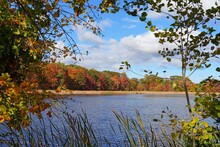 View Of Colorful Autumn Foliage By The Water At The Scarborough Beach State Park Near Portland, Maine, United States