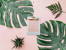 Minimal Tropical Background With Clipboard And Monstera On Pink Background.