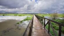 Wooden Footbridge Over A Fuente De Piedra Lagoon