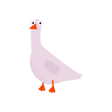 Flat Vector, Goose On White Background