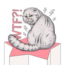Cute Grumpy Scottish Fold Cat Illustration. WTF Illustration. Stylish Image For Printing On Any Surface