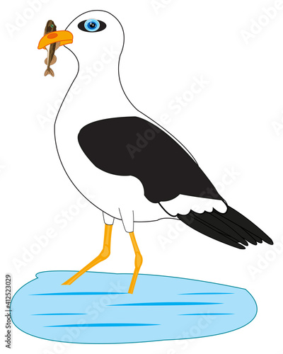 Carta da parati Bird sea gull on fish sea in beak