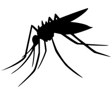 Black Silhouette Of Mosquito Isolated From White Background. Flying Insect. Mosquito Icon. Midge. Tiger Mosquito. Vector Illustration.