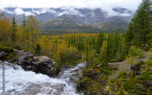 Fototapety, obrazy: Scenic View Of River Flowing Through Forest