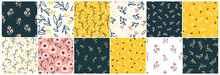 Collection Floral Seamless Pattern With Cute Small Flowers. Simple Doodle Hand-drawn Style. Motifs Scattered Liberty. Pretty Ditsy For Millefleurs Fabric, Textile, Wallpaper. Vector Digital Paper.