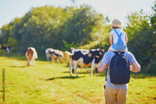 Foto Father holding daughter on shoulders and walking near cows grazing on a green pa