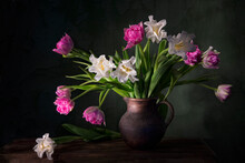 Classic Still Life With Beautiful White And Pink Tulip Flowers Bouquet In Vintage Clay Jar. Art Photography.