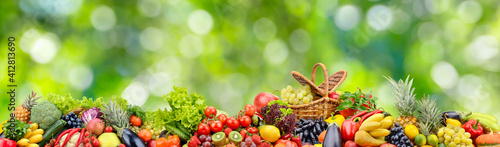 Panoramic collection fresh fruits and vegetables on blurred green © Serghei Velusceac