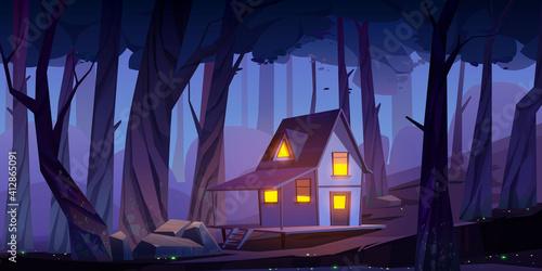 Fotografia, Obraz Wooden mystic stilt house, shack in night forest