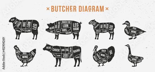 Canvas Print Butcher diagram, scheme set