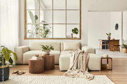 Fototapeta Modern interior of open space with design modular sofa, furniture, wooden coffee tables, plaid, pillows, tropical plants and elegant personal accessories in stylish home decor. Neutral living room. obraz