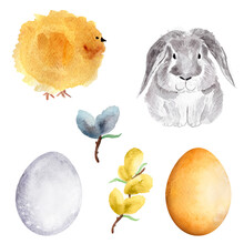 Set Of Easter White Bunny, Chicken, Egg And Pussy Willow. Template For Decorating Designs And Illustrations.