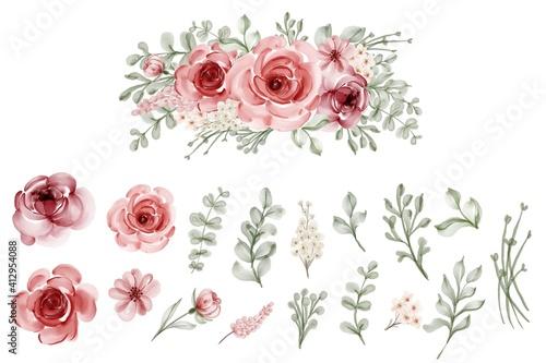 Fototapeta set of isolated flower leaves floral watercolor obraz