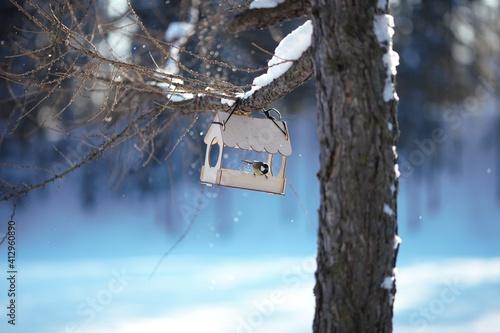 birdhouse in winter Fototapet