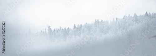 Obraz Góry w mglisty dzień - fototapety do salonu