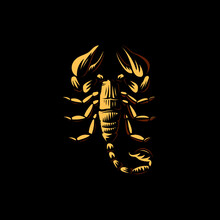 Scorpion On Black Background