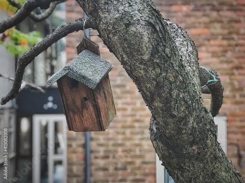 Fotografering Close-up Of Birdhouse Hanging From Tree Trunk