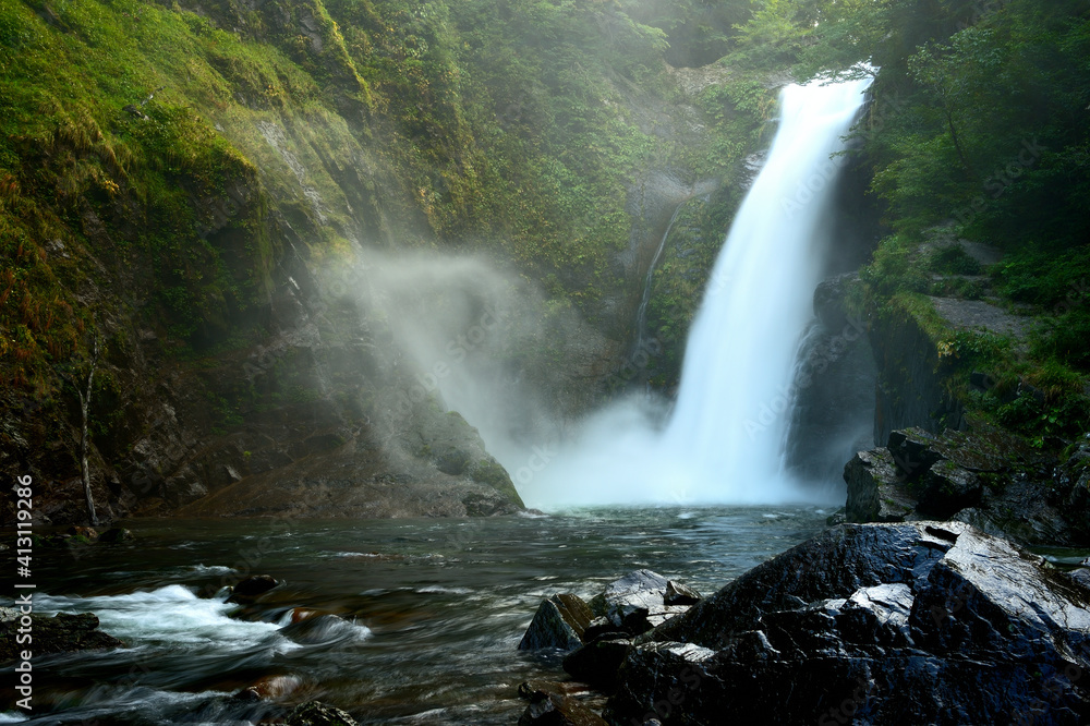 Fototapeta Scenic View Of Waterfall In Forest