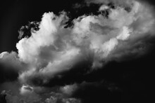 Black And White Dragon Cloud