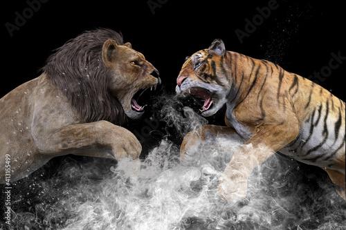 Obraz 巨大なオスのライオンと体躯のしなやかなトラがプライドをかけて牙をむき出し戦う - fototapety do salonu