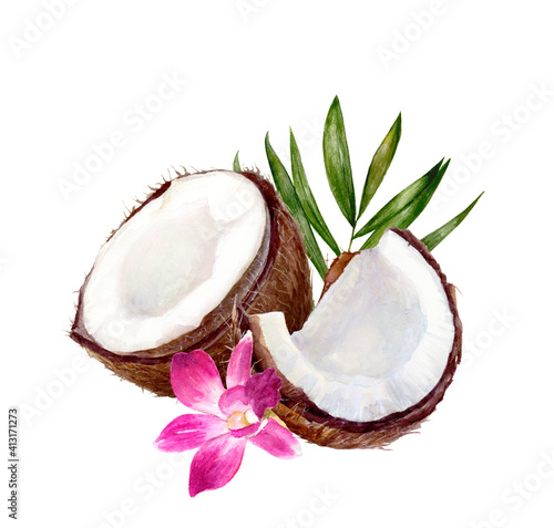 Fotografia, Obraz Coconut composition watercolor illustration isolated on white background