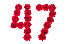 Numeral 47 Made Of Red Roses On A White Isolated Background. Element For Decoration. Forty Seven. Red Roses.