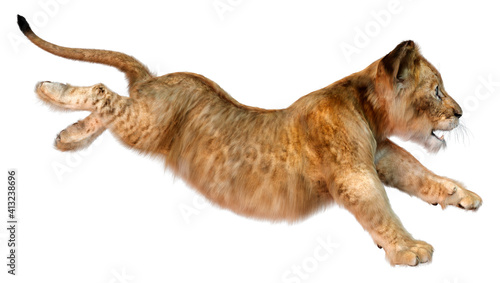 3D Rendering Lion Cub on White Fototapet
