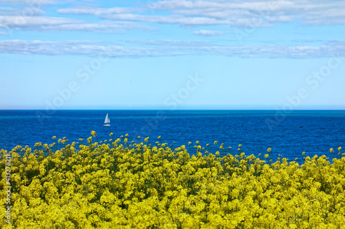 Fotografie, Obraz Scenic View Of Sea Against Blue Sky