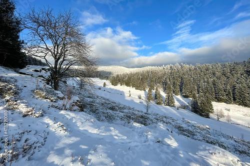 Landschaft im Thüringer Wald im Winter © Henry Czauderna
