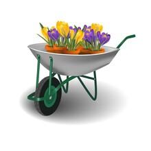 Garden Wheelbarrow With Crocus Flower Pots