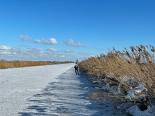 Man Ice Skating On A Frozen Canal In Friesland