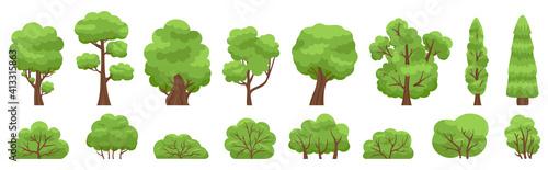 Fotografia Green trees