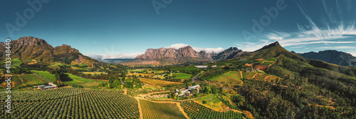 Fotografia Scenic View Of Vineyard Against Sky