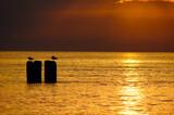 Fototapeta Fototapety do łazienki - sundown, morski, słońce, oceanu, woda, niebo, wschody, plaża, krajobraz, pomarańcz, charakter, horyzont, dzisiejszy wieczór, wieczorny,chmura, piękne, wybrzeze, lato, chmura, podróż.