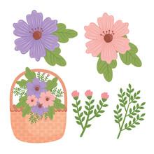 Bundle Of Flowers Spring And Basket Decoration Vector Illustration Design