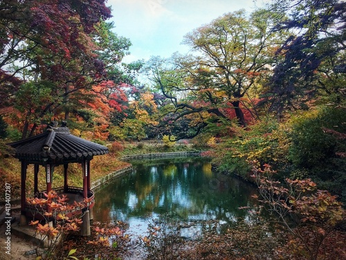 Fototapeta Trees By Lake Against Sky During Autumn