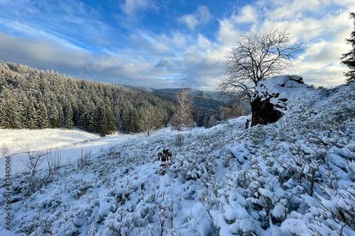 Winter in der Dürren Lauter / Thüringer Wald © Henry Czauderna
