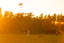 Two Kids Flies A Kite Over Sunset In Park